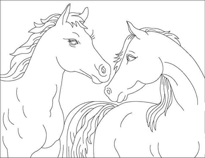 ausmalbilder für kinder pferde