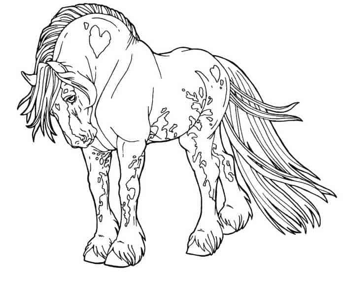 pferde ausmalbilder für erwachsene