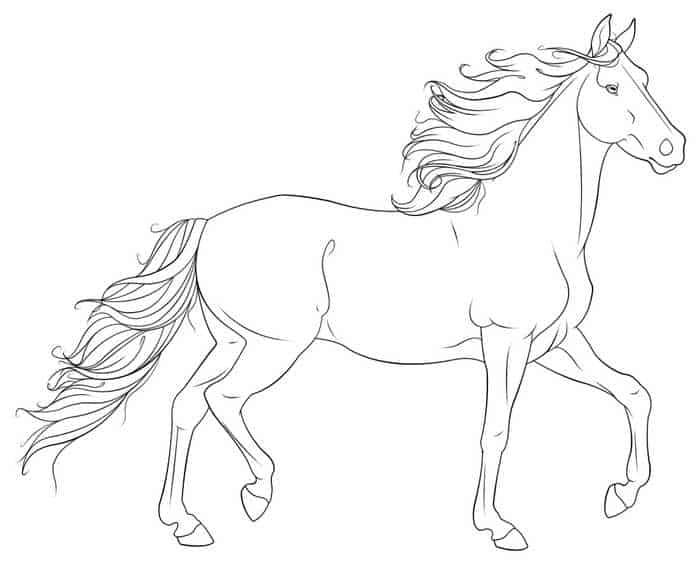 pferde ausmalbilder für kinder